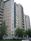 Пр. Сизова, дом 20, корпус 1. Вид со стороны парадных. Фото 25 июня 2012 г.