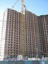 Пр. Просвещения, дом 43. Вид с ул. Руднева на левую часть здания. Фото 4 сентября 2012 г.
