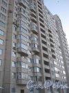Гражданский пр., дом 116, корпус 5. Общий вид здания со стороны парадных. Фото 24 января 2013 г.
