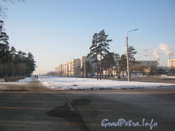 Перспектива пр. Ветеранов в сторону ул. Пионерстроя от ул. Лётчика Пилютова. Вдали справа дома 151,153 и 155 по пр. Ветеранов. Фото февраль 2012 г.