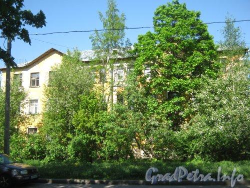 Дачный пр., дом 23, корп. 6. Общий вид со стороны дома 74 по ул. Танкиста Хрустицкого. Фото 23 мая 2012 г.