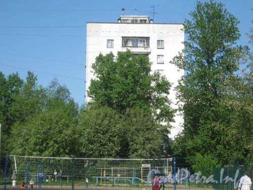 Дачный пр., дом 31, корп. 2. Общий вид со стороны дома 104 по ул. Танкиста Хрустицкого. Фото 23 мая 2012 г.