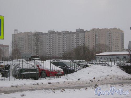 Проспект Ветеранов, дом 130. Вид с пересечения улиц Добровольцев и Отважных. Фото 6 января 2013 г.
