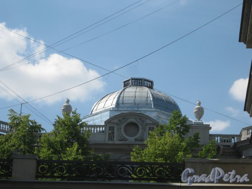 Каменноостровский пр., дом 26-28. Фрагмент верхней части одного из зданий. Фото 7 июля 2012 г.