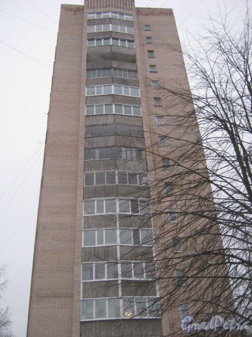 Пр. Просвещения, дом 64, корпус 2. Общий вид жилого дома. Фото 25 января 2013 г.