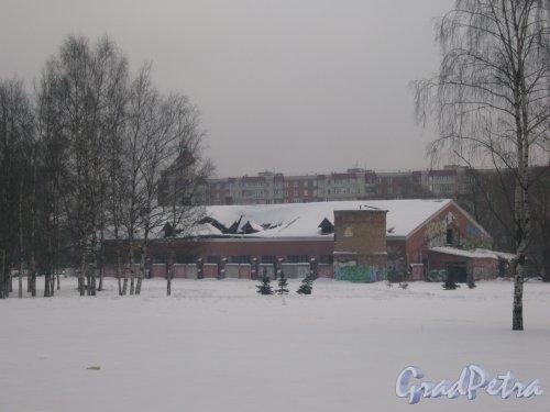 Тихорецкий пр., дом 17, литера Г. Общий вид здания со стороны Тихорецкого пр. Фото 17 февраля 2013 г.
