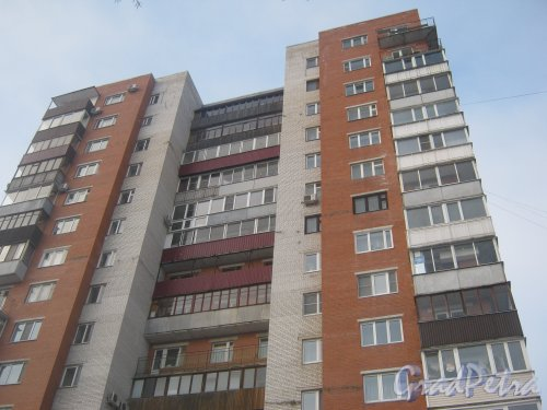 Тихорецкий пр., дом 11, корпус 4. Фрагмент здания. Фото 17 февраля 2013 г.