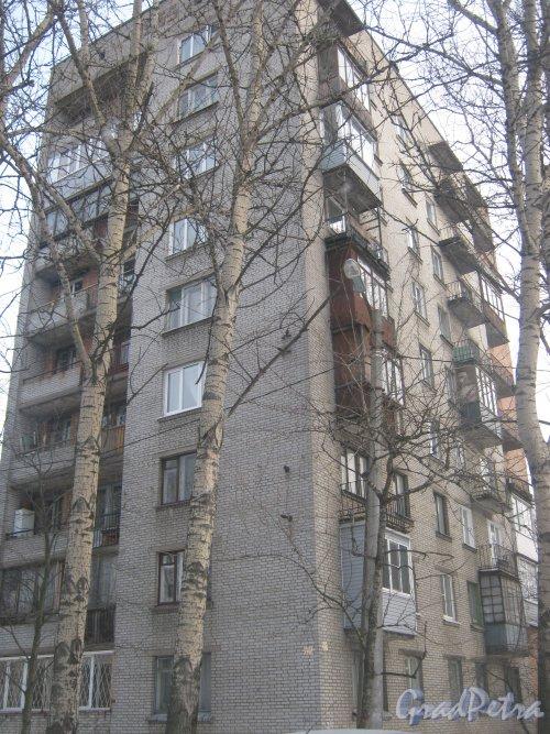 Тихорецкий пр., дом 11, литера А. Общий вид со стороны дома 9 корпус 1. Фото 17 февраля 2013 г.