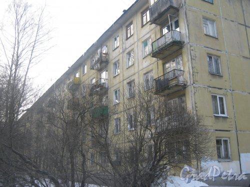 Тихорецкий пр., дом 9, корпус 3. Фрагмент здания со стороны дома 13. Фото 17 февраля 2013 г.