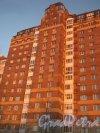 Пр. Энгельса, дом 107, корпус 3. Фрагмент. Вид с территории автосервиса (дом 107, корпус 4). Фото 26 ноября 2013 г.