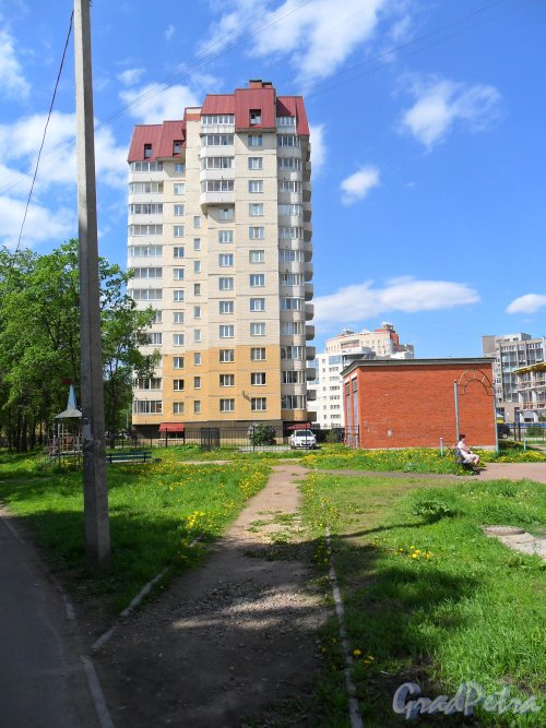 Ленинский проспект, дом 151, корпус 3. Фото 28 мая 2013 г.