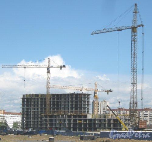 Союзный проспект (проектируется). Строящиеся здания. Вид с Дальневосточного пр. Фото 16 августа 2013 г.