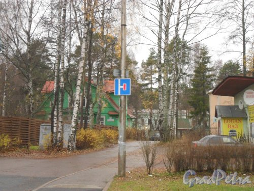 Город Зеленогорск,проспект Красных Командиров,дом 44. Фото октябрь 2013 года.