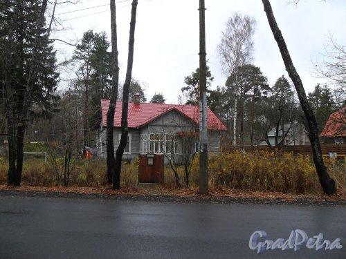Город Зеленогорск,проспект Красных Командиров,дом 42. Фото октябрь 2013 года.