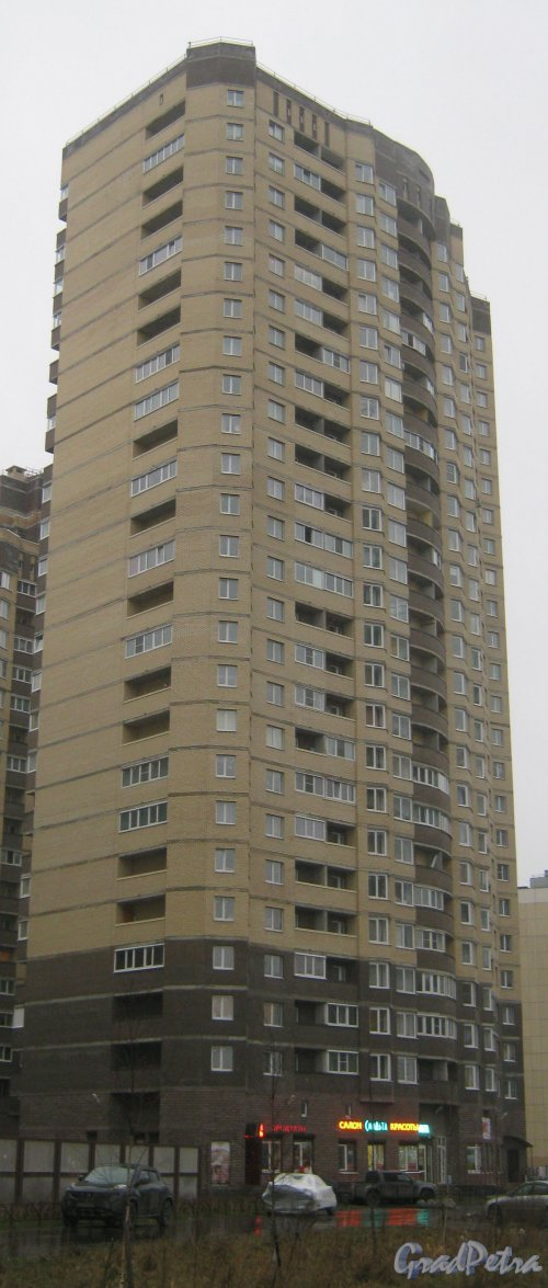 Пр. Кузнецова, дом 12, корпус 1. Общий вид с пр. Кузнецова. Фото 29 декабря 2013 г.