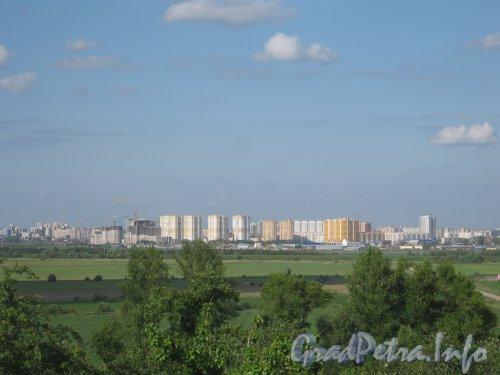 Вид с Пулковских высот в сторону новостроек в районе Купчино. Фото 11 июля 2012 г.