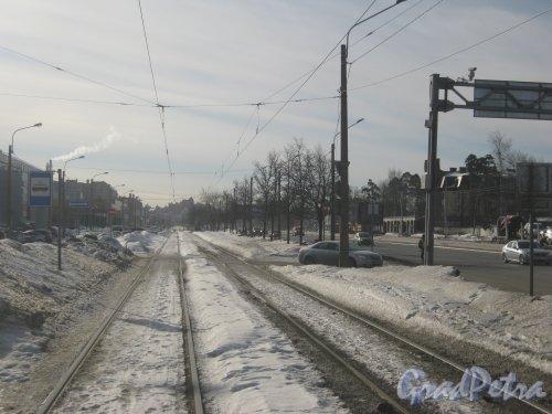 Выборгское шоссе. Перспектива трамвайных путей от ул. Хошимина в сторону Поклонной горы. Фото 16 марта 2013 г.