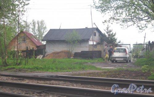 Рябовское шоссе.  Вид на дома частного сектора в районе реки Лубья. Фото 17 мая 2013 г.