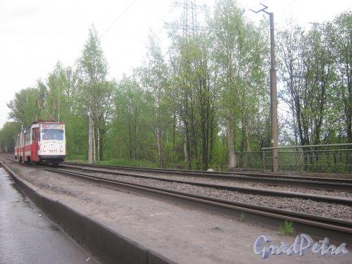 Рябовское шоссе.  Вид на трамвай 64 маршрута, проезжающий в районе реки Лубья. Фото 17 мая 2013 г.