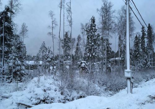 Ленинградская область,Сертолово, г. - Участок продажа