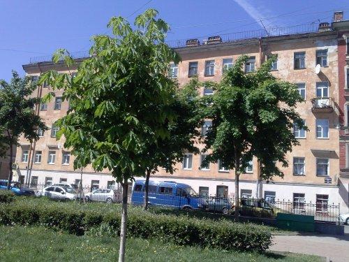 Санкт-Петербург,Витебская ул. - Комната/комнаты продажа (вторичное)