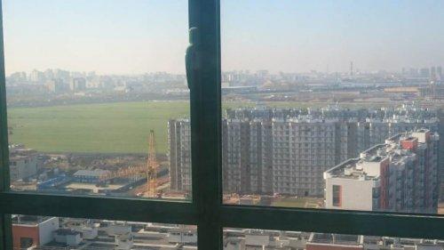 Ленинградская область,Воронцовский бул. (Мурино) - 1 комн. квартира продажа (вторичное)