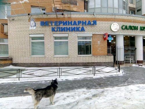 Санкт-Петербург,Димитрова ул. - Встроенное помещение сдам (вторичное)