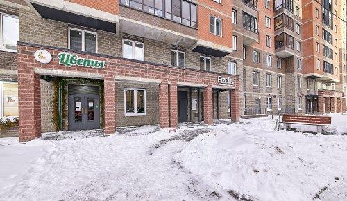 Санкт-Петербург,Валерия Гаврилина ул. (Парголово) - 3 комн. квартира продажа (вторичное)